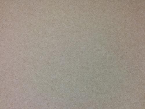 Nexus5 カメラで撮影
