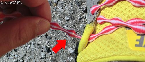 結ばない靴紐 TWINS キャタピラン(伸縮型靴紐) 75cm